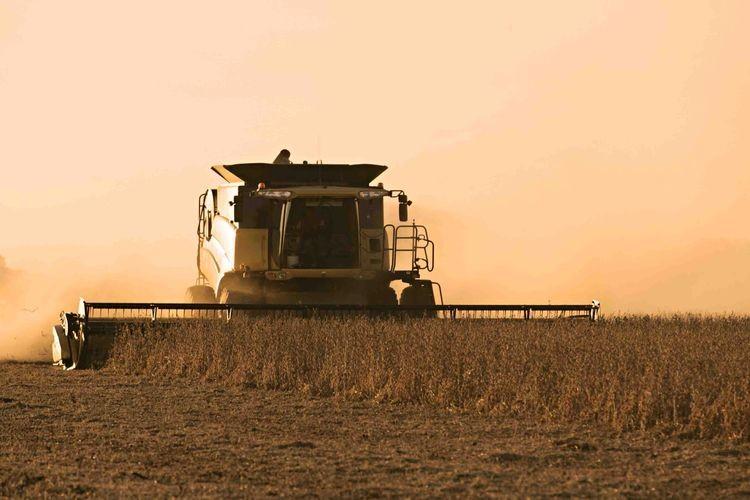 EL informe destaca que las zonas más secas del centro norte de Entre Ríos, pueden recibir algunas recargas. También las localidades del centro norte de Santa Fe, aunque con menos probabilidad y seguramente menor volumen . Foto: Agencia