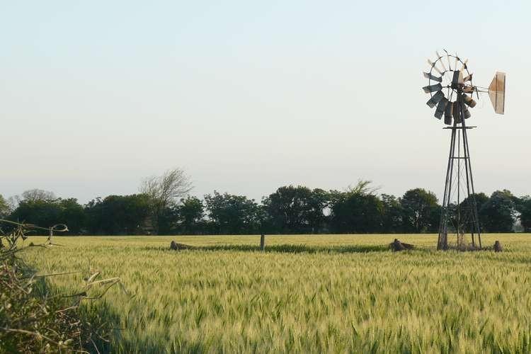 Los excesos hacen retroceder la condición de los cultivos de buena parte del sur de Santa Fe y también en el centro sur, en los departamentos de San Martín, San Jerónimo, Castellanos, Las Colonias y La Capital.  Foto: Archivo