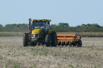 Al ser la soja el único cultivo con derechos de exportación, la participación del Estado en esta es del 66,4%, mientras que en el maíz es del 40,6% en la medición de este junio 2018. Foto: Campolitoral