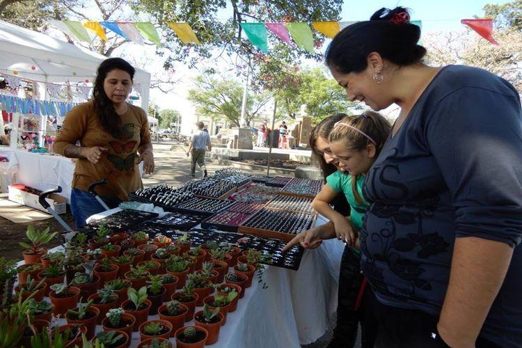 Es por ello que desde las 15, los visitantes podrán disfrutar de actividades y música para toda la familia, que presenta la Feria de Emprendedores. Además podrán conocer, descubrir y adquirir productos locales. Foto: Archivo