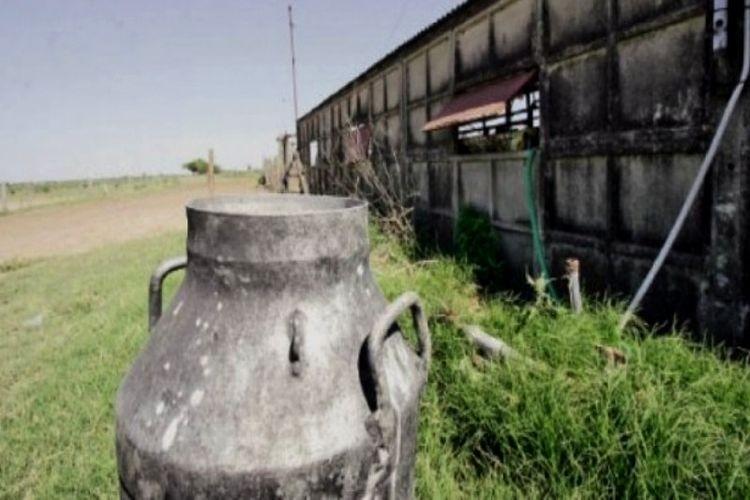 Todavía no está definido el dato duro correspondiente a septiembre, pero según el INTA Rafaela ya en agosto producir un litro de leche en un tambo chico costaba más de 8 pesos por litro.Foto: Archivo