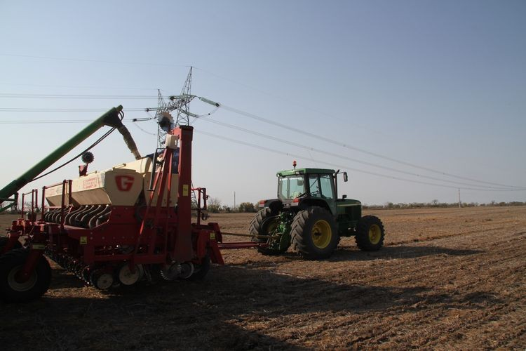 Esto consolida las estimaciones de incremento en las superficies destinadas a maíz de primera y girasol, cultivos cuya siembra avanza a buen ritmo, aunque con un retraso interanual para el primero. Foto: Archivo