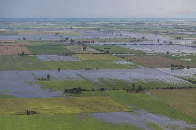 """En los fundamentos de la medida se indica que a """"que a raíz de las intensas precipitaciones sin precedentes en distintas regiones del país, es necesario brindar soluciones inmediatas y efectivas para amortiguar el impacto económico en los productores agropecuarios"""". Foto: Archivo"""