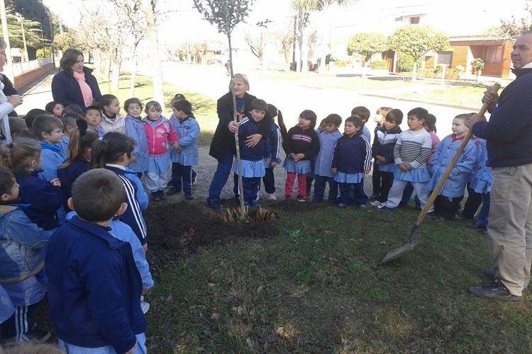 En este sentido aclararon que al plantar especies jóvenes de árboles debemos tener especial atención en los primeros años, hasta que el mismo sea autosuficiente. Foto: Archivo