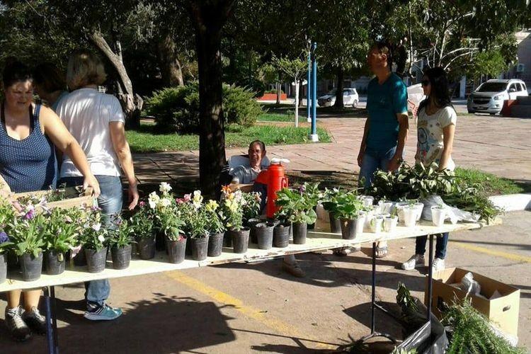 Se trata de una acción conjunta entre la comuna y el grupo de Colaboradores Ambientales. Por su gesto de colaborar se le entrega a los vecinos como modo de agradecimiento con plantines florales y aromáticas y verdura. Foto: Archivo